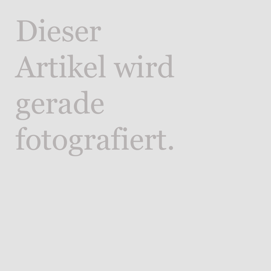 Viskose/Polyester Spitze GINETTE